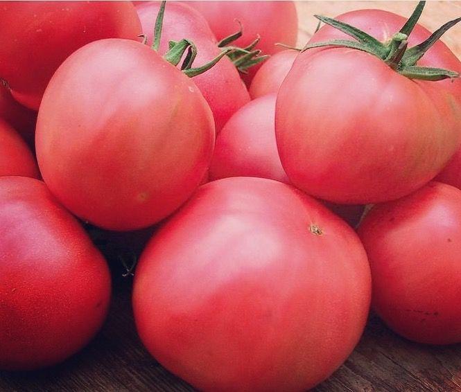 Berner Rose Tomato - Heirloom (60-75 seeds)